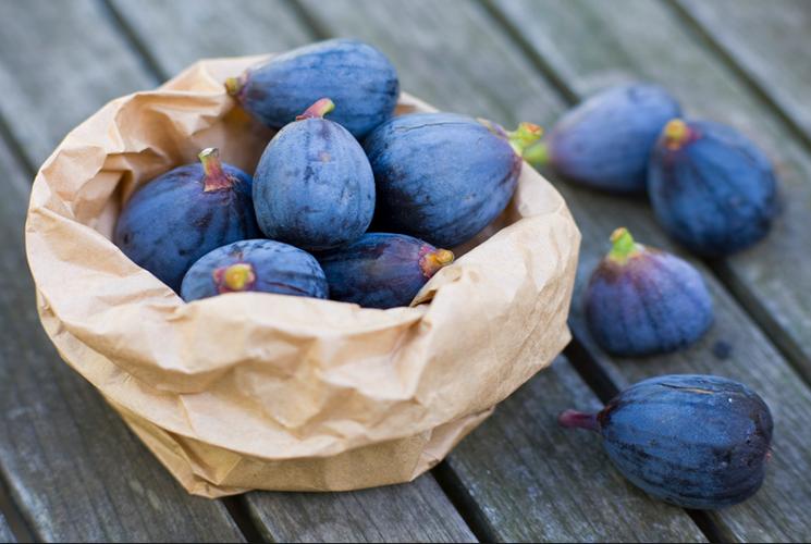 Плоды инжира и их польза