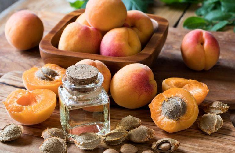 Лечебные свойства абрикосов