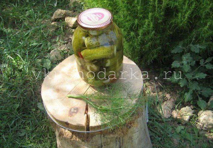Консервация огурцов на зиму рецепт без стерилизации