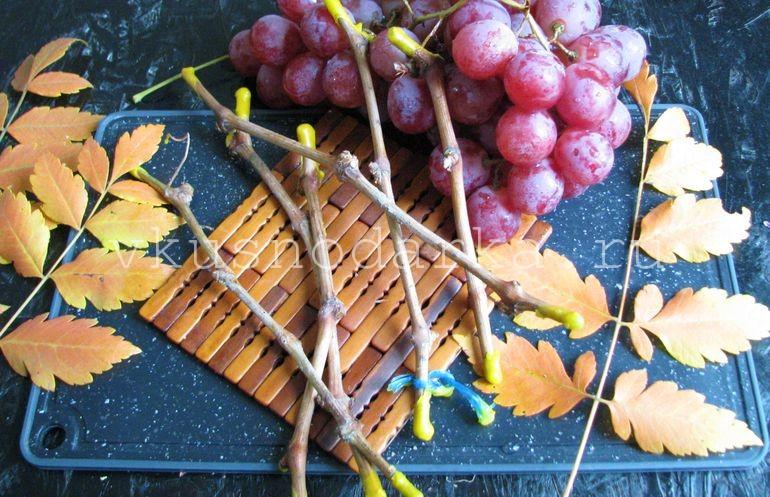 Парафинирование винограда