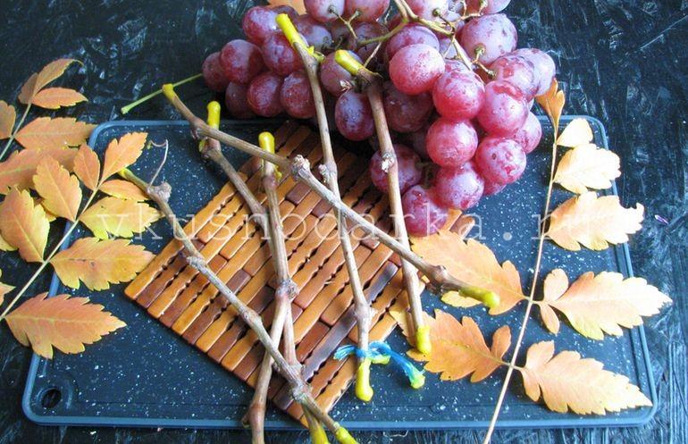 Парафинирование винограда - инструкция с пошаговым личным фото